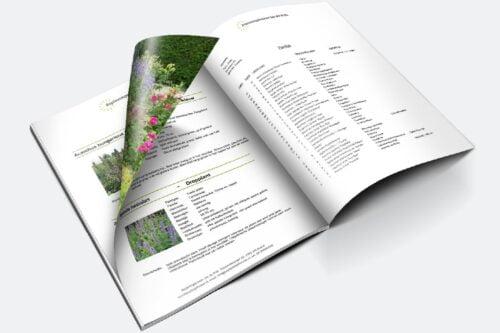 Plantbeschrijving en plantlijst